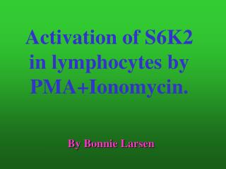 Activation of S6K2 in lymphocytes by PMA+Ionomycin.