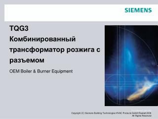 TQG3 Комбинированный трансформатор розжига с разъемом