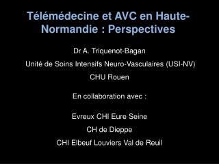 Télémédecine et AVC en Haute-Normandie : Perspectives