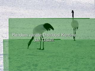 Random variate Distribusi Kontinu dan Diskrit