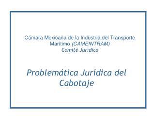 Cámara Mexicana de la Industria del Transporte  Marítimo  (CAMEINTRAM ) Comité Jurídico