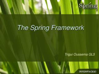 The Spring Framework