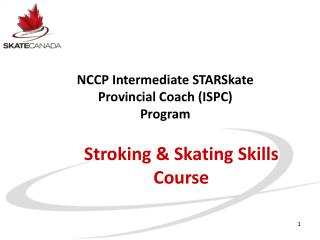 Stroking & Skating Skills Course