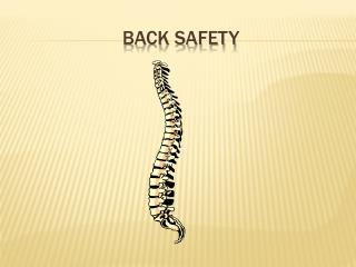 BACK SAFETY