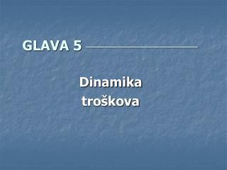 GLAVA 5 