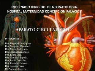 INTERNADO DIRIGIDO  DE NEONATOLOGIA HOSPITAL MATERNIDAD CONCEPCION PALACIOS
