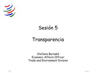 Sesión 5 Transparencia