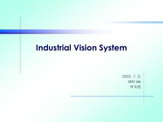 Industrial Vision System