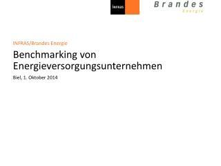 INFRAS/Brandes Energie Benchmarking von Energieversorgungsunternehmen