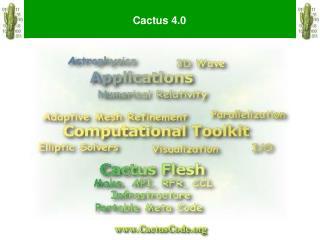 Cactus 4.0