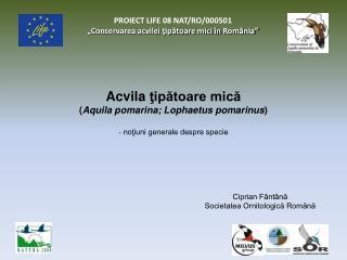 """PROIECT LIFE 08 NAT/RO/000501  """"Conservarea acvilei ţipătoare mici în România"""""""