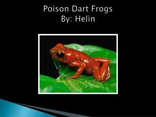 Poison Dart Frogs By:  Helin