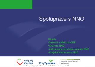Spolupráce s NNO