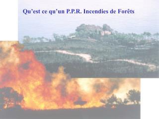 Qu'est ce qu'un P.P.R. Incendies de Forêts