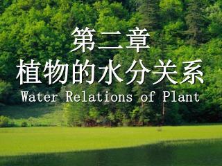 第二章   植物的水分关系 Water Relations of Plant