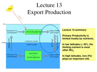 Lecture 13  Export Production