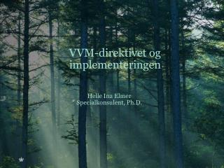 VVM-direktivet og implementeringen