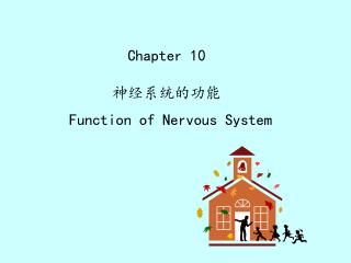 Chapter 10 神经系统的功能 Function of Nervous System