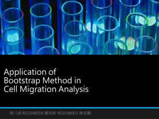 Application of Bootstrap Method in  Cell Migration Analysis