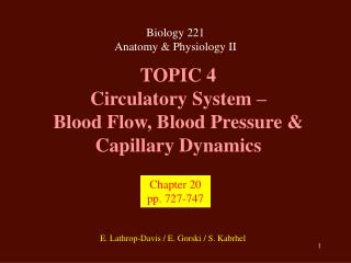 TOPIC 4 Circulatory System – Blood Flow, Blood Pressure & Capillary Dynamics