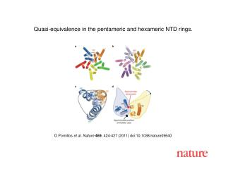 O Pornillos  et al. Nature 469 , 424-427 (2011) doi:10.1038/nature09640