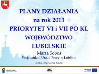 PLANY DZIAŁANIA  na rok 2013 PRIORYTET VI i VII PO KL WOJEWÓDZTWO  LUBELSKIE