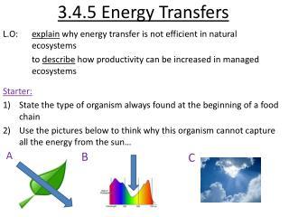 3.4.5 Energy Transfers