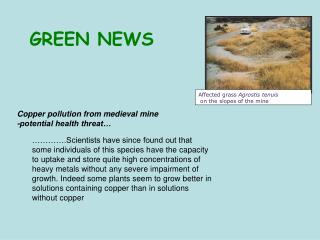 Copper pollution from medieval mine  -potential health threat…
