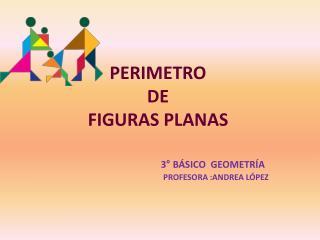 PERIMETRO   DE  FIGURAS PLANAS 3° BÁSICO  GEOMETRÍA