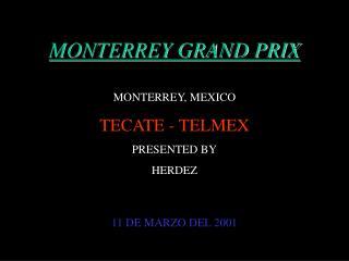 MONTERREY GRAND PRIX MONTERREY, MEXICO TECATE - TELMEX PRESENTED BY HERDEZ 11 DE MARZO DEL 2001