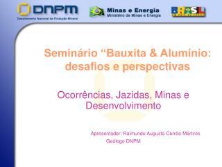 """Seminário """"Bauxita & Alumínio: desafios e perspectivas"""
