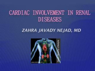 INDIVIDUALIZING THE HEMODIALYSIS TREATMENT