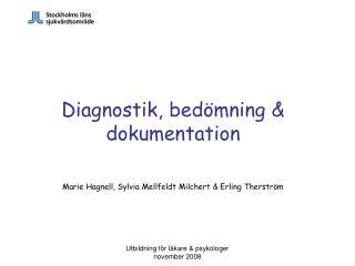 Diagnostik, bedömning & dokumentation Marie Hagnell, Sylvia Mellfeldt Milchert & Erling Therström
