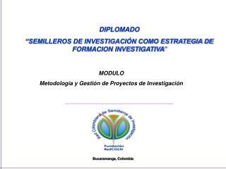 """DIPLOMADO """"SEMILLEROS DE INVESTIGACIÓN COMO ESTRATEGIA DE FORMACION INVESTIGATIVA """""""