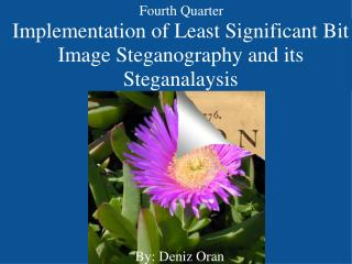 Implementation of Least Significant Bit Image Steganography and its Steganalaysis