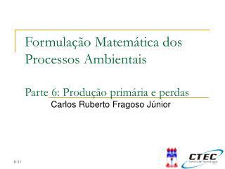 Formulação Matemática dos Processos Ambientais Parte 6:  Produção primária e perdas