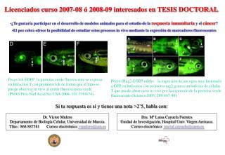 Licenciados curso 2007-08 ó 2008-09 interesados en TESIS DOCTORAL