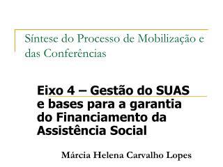 Síntese do Processo de Mobilização e das Conferências