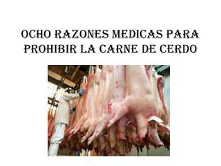 Ocho razones medicas para prohibir la carne de cerdo