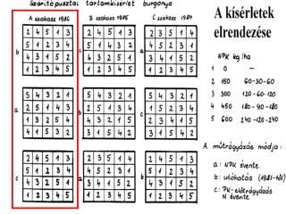 Kéttényezős varianciaanalízis  (véletlen blokk)