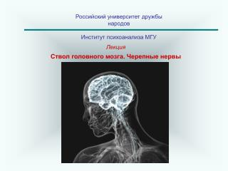 Российский университет дружбы народов Институт психоанализа МГУ