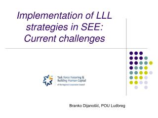 Implementation of LLL strategies in SEE:  Current challenges