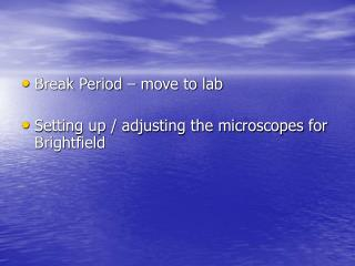 Break Period � move to lab Setting up / adjusting the microscopes for Brightfield