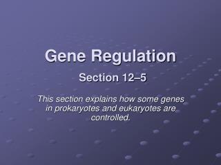 Gene Regulation Section 12�5