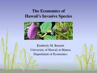 The Economics of  Hawaii's Invasive Species