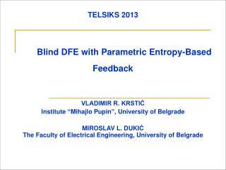TELSIKS 2013 Blind DFE with Parametric Entropy-Based Feedback