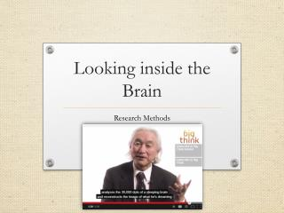 Looking inside the Brain