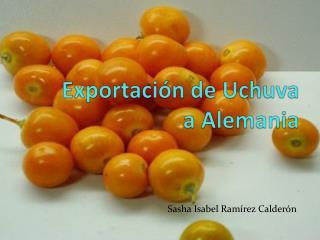 Exportación de Uchuva a Alemania