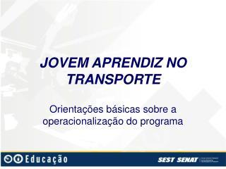 JOVEM APRENDIZ NO TRANSPORTE