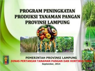 PEMERINTAH PROVINSI LAMPUNG DINAS PERTANIAN TANAMAN PANGAN DAN HORTIKULTURA September, 201 4